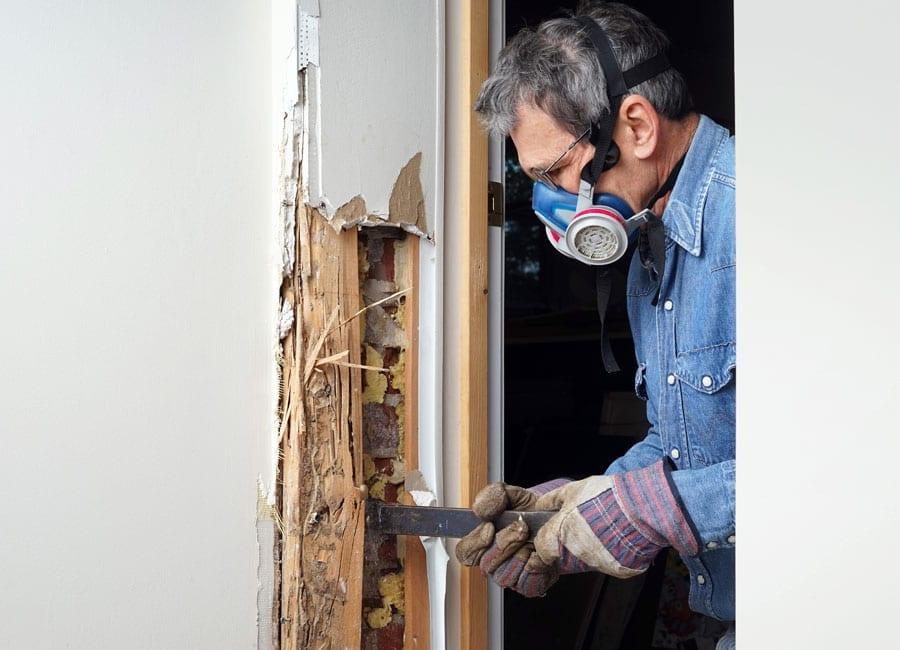 Home Termite Treatments
